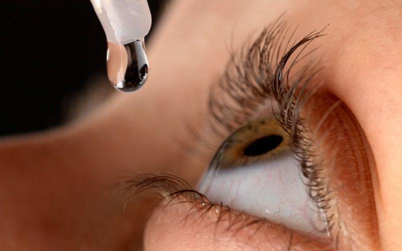 oftalmologie pentru pui)